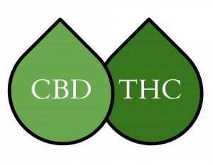 Τι είναι η Κανναβιδιόλη στην Κάνναβη, και πόσο διαφορετική είναι από την Τετραϋδροκανναβινόλη (THC); 1