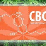 Κανναβιχρωμίνη (CBC) - 5 οφέλη για την υγεία 2