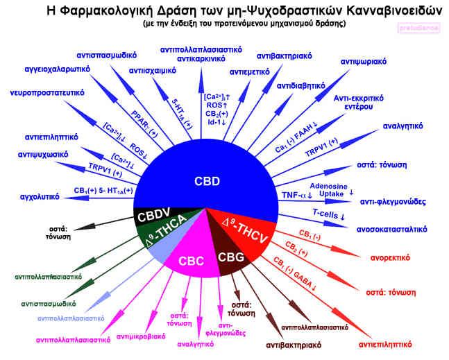 kannavi-drasi-non-psychoactives-chart