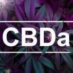 Τι είναι το CBDa και τι κάνει 21
