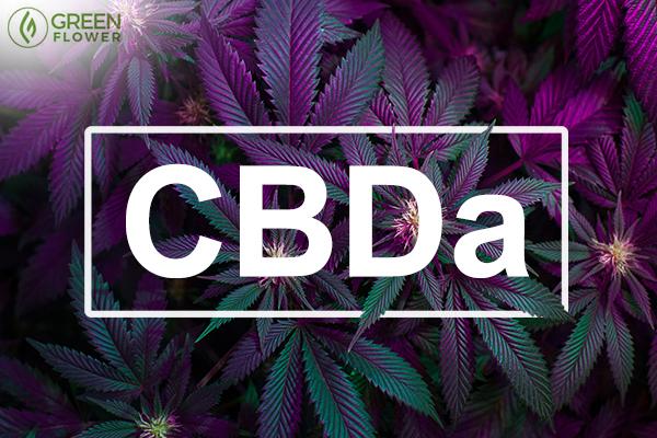 Τι είναι το CBDa και τι κάνει 1