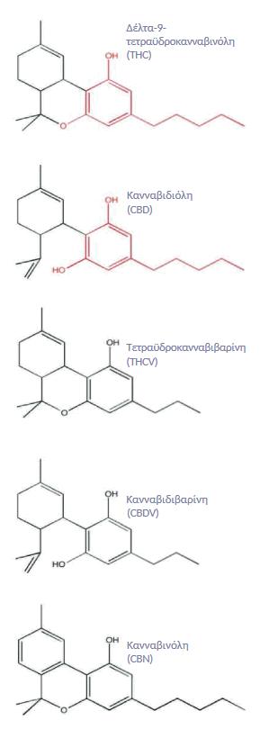 Σχήματα Πέντε Κανναβινοειδών_THC_CBD_THCV_CBDV_CBN